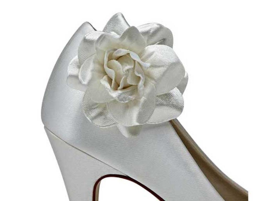 c4ccbecd4bd5 Rainbow Club Titania Satin Flower Party Women Shoe Clips Pair One ...